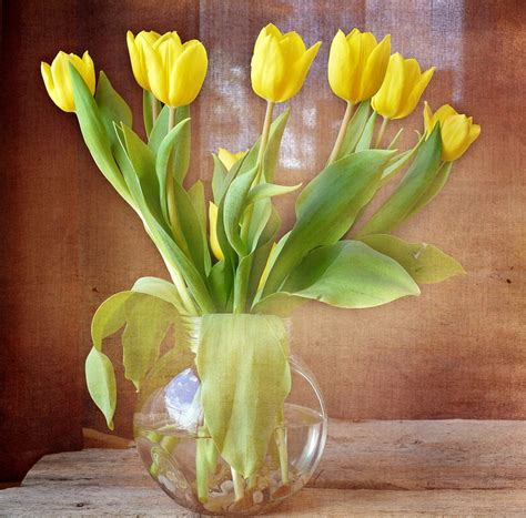 how to keep flowers fresh longer tips for different varieties