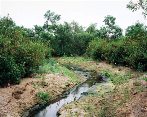 Landscape Creek A Future In Landscaping Chris Dea