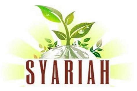 fintech pp syariah alami incar pertumbuhan   lipat