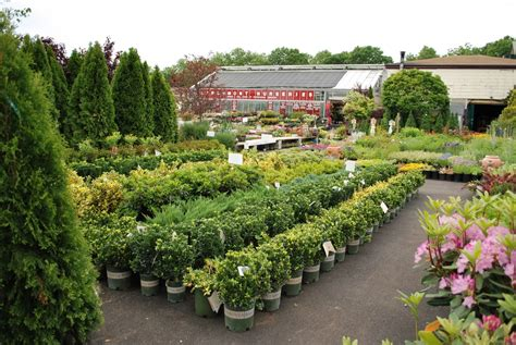 Garden Center Nursery Find A Garden Center Monrovia 72 Best 1000 Ideas About
