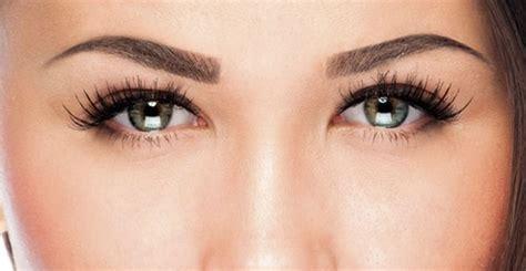 tatuajes de las cejas natural beauty macrifa micropigmentaci 243 n de cejas