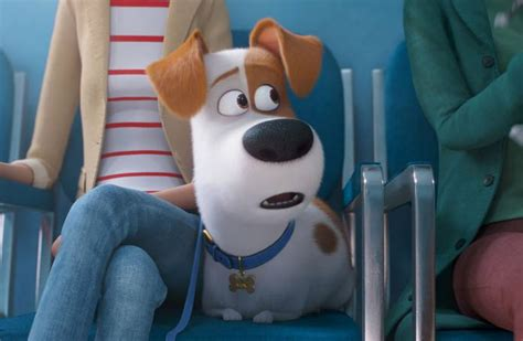 secret life  pets ride coming  universal studios