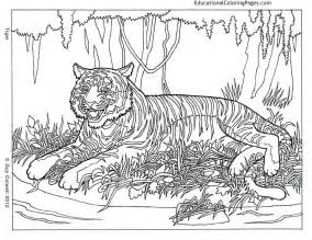 animal coloring pages for adults animal coloring pages for adults az coloring pages