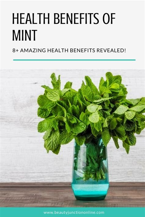 Detox Benefits Of Mint by The 25 Best Benefits Of Mint Leaves Ideas On