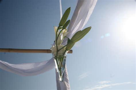 Wedding Arch Vases by Weddings Ta Wedding Planner Ta Bay Event