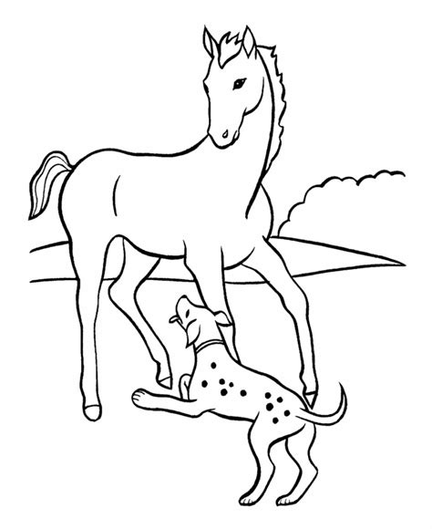 coloring pages of horses and puppies horse coloring pages for adults coloring home