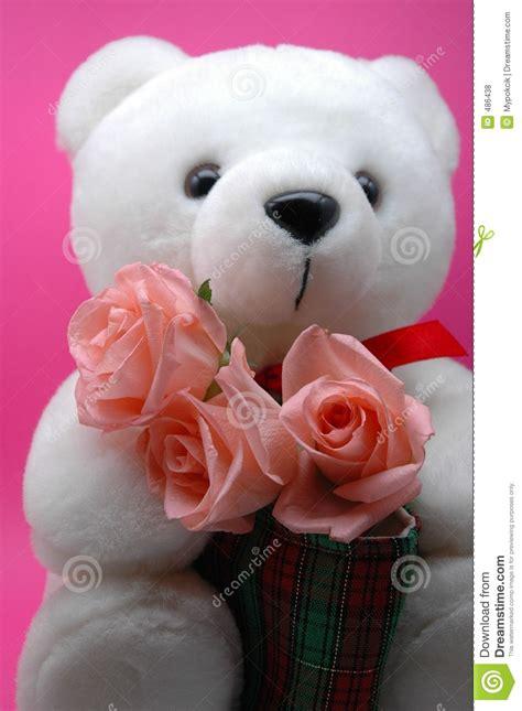 imagenes de rosas y peluches oso del peluche y rosas rosadas
