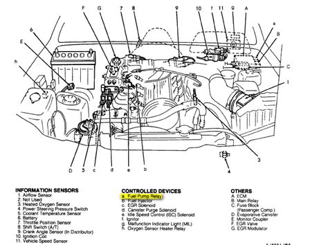 Suzuki Samurai Transfer Diagram Suzuki Sidekick Wiring Diagram Suzuki Sidekick