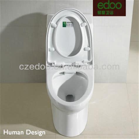dual flush ceramic toilet bowl wc toilet fish tank unit