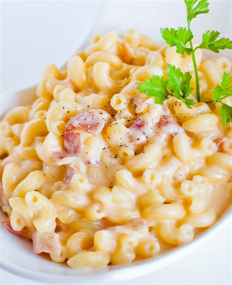 gourmet mac and cheese recipe 28 gourmet macaroni and cheese recipe gourmet baked