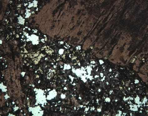 volcanic glass in thin section figure f75 angular fragment of volcanic rock with