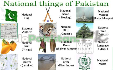 pictures of things national things of pakistan bolopakistan