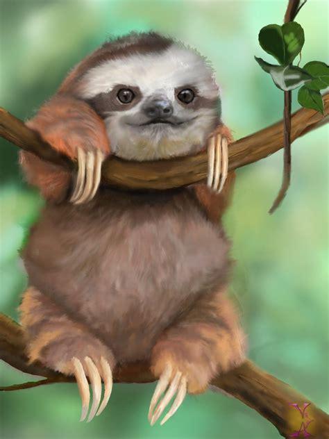 Pjhb85864 Pajamas Hug A Baby images for gt baby sloth in pajamas gif hug a sloth today