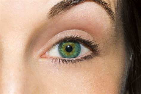 best eye color find the best eyeshadow for your eye color community