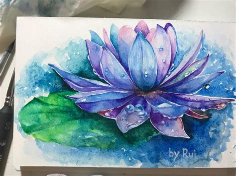 water lily watercolour art amino