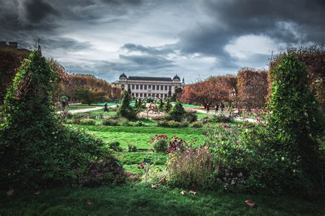 jardin in paris file jardin des plantes paris november 2015 jpg