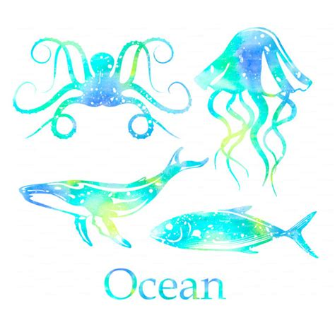 animals watercolor whale jellyfish fish octopus digital blue clipart png file eps