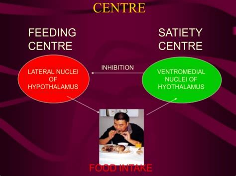 neuropeptide y carbohydrates obesity nutrients modulators of neuropeptides and
