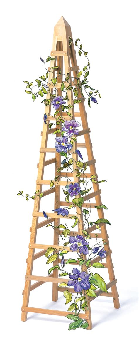 how to build a trellis for climbing plants pdf how to make a trellis for vines plans free