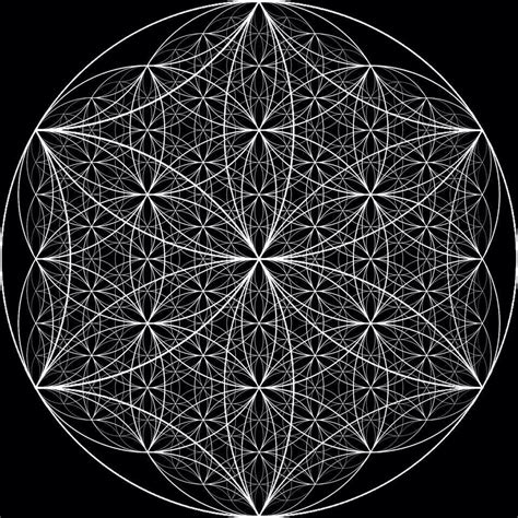 geometria sagrada sacred geometry 8484452018 a scalar flower of life image that eludes to the holofractographic structure of the fabric of