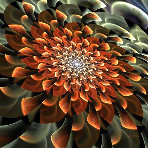 november flower november flower by baba49 on deviantart