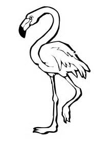 flamingo coloring page bird coloring pages