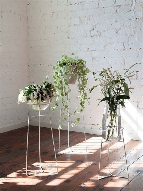 bewitching trio  wire plant stands modern plant