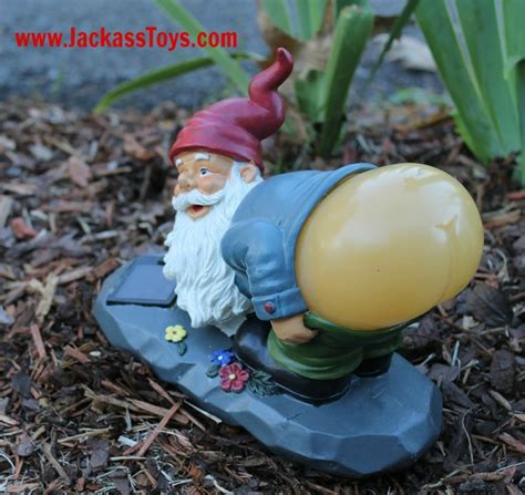 dirty gnome garden images  pinterest