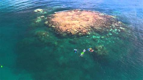 glass bottom boat great barrier reef great barrier reef cruise glass bottom boat australia