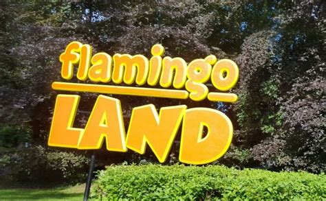 activities near me flamingo land 2 4 1 september 16 attractions near me
