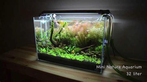 planted tank mini nature aquarium youtube