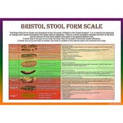 25 best ideas about bristol stool scale on