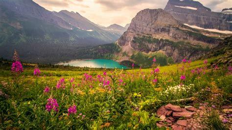 landscape mountains mountain lake flowers beautiful hd
