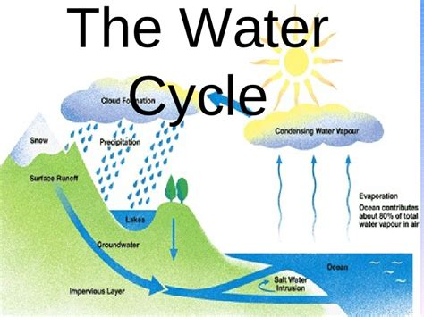 Hydrogen diagram thyroid metabolic hormones file hexane 2d a hydrogen diagram the water cycle final product ccuart Images