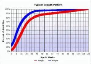 pitbull puppy growth chart the world s catalog of ideas