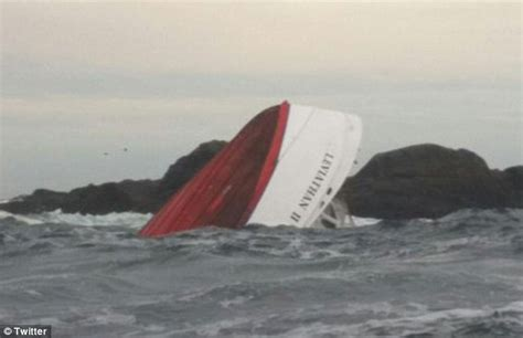 sinking fishing boat gif eyewitness reveals how whale watching boat sank off