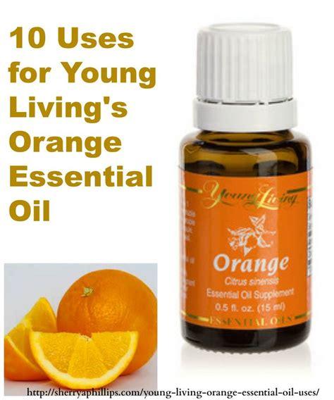 Living Essential Orange 18 best images about orange living on