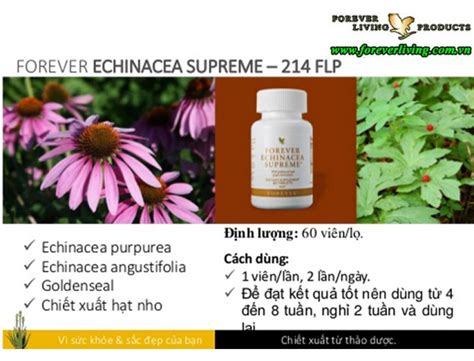 forever echinacea supreme forever echinacea supreme 214 flp forever living products