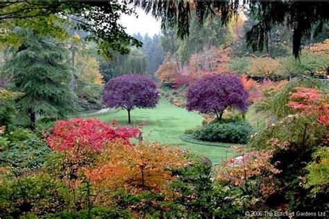 wallpaper bunga paling indah ada 8 taman bunga terindah di dunia marhani rosyadah