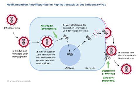 Paxil Detox Symptoms by Amantadin Wirkmechanismus Umzugsunternehmen Krefeld G 252 Nstig