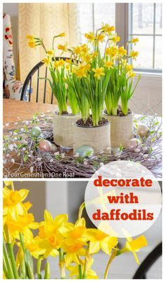 Ideas For Daffodil Varieties Design 1000 Images About Decorating On Pinterest Mantels Easter Eggs And Easter