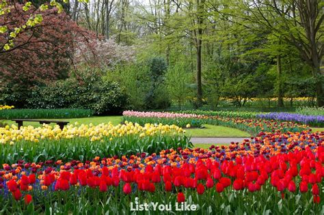 gardens of the world eleletsitz top 10 most beautiful gardens in the world images