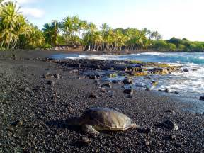 punalu u punalu u black sand beach big island hawaii