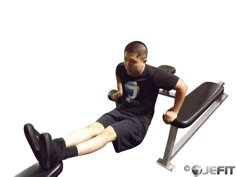 dips off bench three bench dip exercise database jefit best android