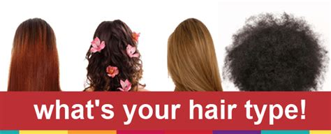 Knowing Your Hair Type by Best Way To Your Hair Type 10 Best Buy Reviews