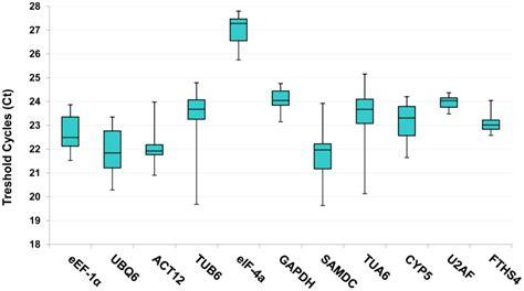 Tang Kombinasi Sun Flex 7 box plot graph of ct value shows the median values as
