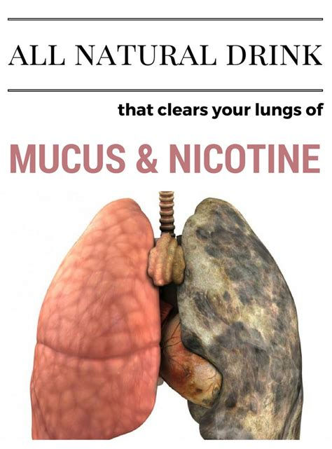 How To Detox Your From Nicotine Fast by Best 25 Clear Lungs Ideas On Clean Lungs