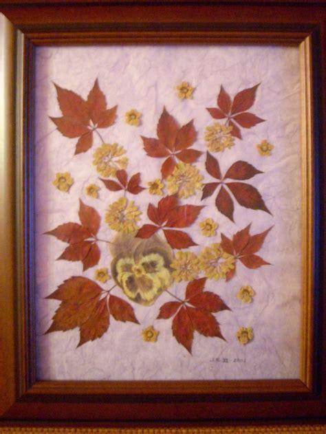 imagenes de flores secas 80 best images about hojas y semillas on pinterest