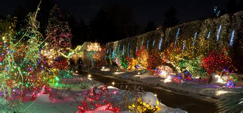 Denver Botanic Gardens Lights Swingle Shares Best Places To View Lights In Denver Fort Collins Colorado