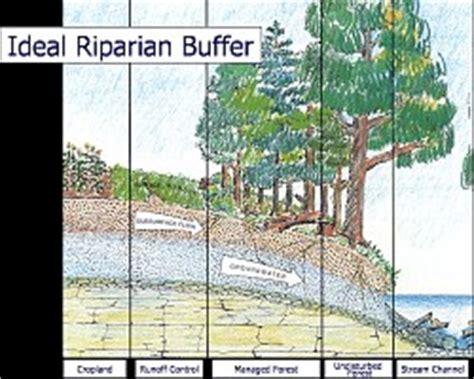 Landscape Buffer Definition River Basin Riparian Project